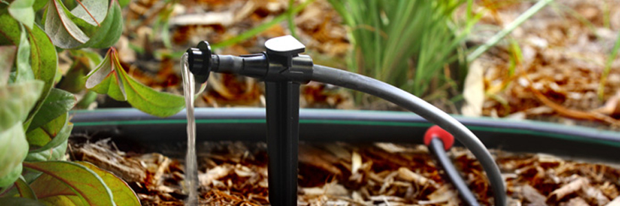 Rainbird Xeri drip irrigation